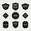 Vintage labels or badges retro style set. Vector design elements. — Stock Vector