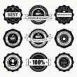 Vintage style retro emblem label big collection. Vector design elements. — Stock Vector #25447383