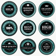 Vintage labels set. Vector design elements. — Stock Vector #25447387