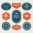 Vintage labels or badges and ribbon retro style set. Vector design elements. — Stock Vector #25447511