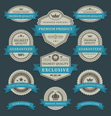 Vintage labels and ribbons retro style set. Vector design elements. — Stock Vector
