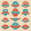 Vintage labels and ribbon retro style set. Vector design elements. — ベクター素材ストック