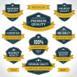 Vintage labels or badges and ribbon retro style set. Vector design elements. — Stock Vector #25450727