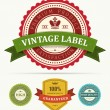 Vintage labels and ribbon set. Vector design elements. — Stock Vector