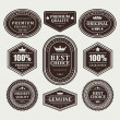 Vintage labels set. Vector design elements. - Stockvektor