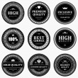 Vintage labels set. Vector design elements. — ベクター素材ストック