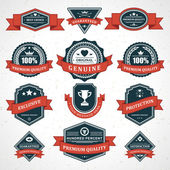 Vintage labels and ribbon retro style set. Vector design elements — Stock Vector