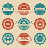 Intage labels set. Vector design elements. — Stock Vector