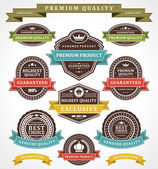 Vintage labels and ribbons set. Vector design elements. — Stock Vector