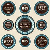 Vintage etiketten instellen. vector designelementen. — Stockvector