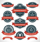 Vintage labels and ribbon retro style set. Vector design elements. — Stock vektor