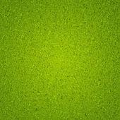 Green grass texture vector background eps 10. — Stock Vector