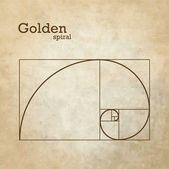 Golden ratio, proportion — Stock Vector