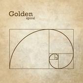 Golden ratio, proportion — Stock Vector