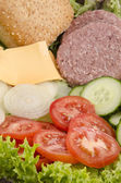 Ingredients to make a hamburger — Stock Photo