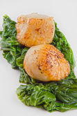 Scallops with spinach on a plate — Stock Photo