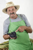 Organic farmer with some red grapes in his hand — Stock Photo