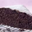 Chocolate cake sprinkled with icing sugar — Stock Photo #14475081
