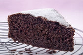 Chocolate cake sprinkled with icing sugar — Stock Photo