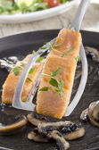 Freshly grilled salmon on a spatula — Stock Photo