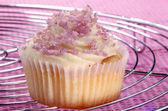 Cupcake on a cooling rack — Stock Photo