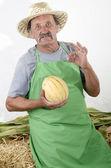 Organic farmer with a honey melon — Stock Photo