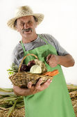 Organic farmer and a basket with fresh vegetable — Stock Photo