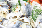 Rollmops with dill and peppercorns — Stock Photo
