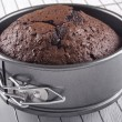 Baked chocolate cake in a baking tin — Stock Photo