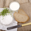French brie camembert with thyme — Stock Photo