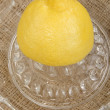 Lemon on a lemon squeezer — Stock Photo