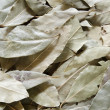 Stock Photo: Fresh dried organic bay leaves