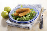 Fried chicken goujons with salad — Stock Photo