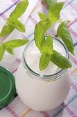 Home made organic yogurt in a glass — Stock Photo