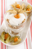 Yogurt with physalis in a glass — Stock Photo