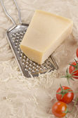 Mozarella and grater on paper — Stock Photo