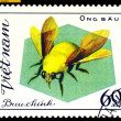 Vintage  postage stamp. Insect Ong Bau. — Stock Photo