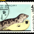 Royalty-Free Stock Photo: Vintage  postage stamp. Gray Seals.