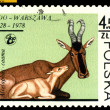 Vintage  postage stamp. Antelope Kama and colt. — Stock Photo
