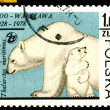 Vintage postage stamp. Polar bear. — Stock Photo #24019501