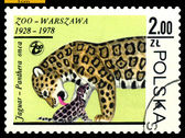 Vintage postage stamp. Jaguars. — Stock Photo