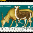 Vintage  postage stamp. Eland and Guanaco. — Stock Photo