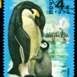 Vintage postage stamp. Emperor penguin and chick. — Stock Photo