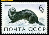 Vintage postage stamp. Sea otter. — Stock Photo