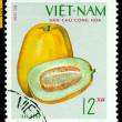 Vintage  postage stamp. Pumpkin. — Stock Photo
