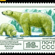 Vintage postage stamp. Polar bear. — Stock Photo