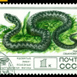 Vintage postage stamp. Lebetina Viper. — Stock Photo