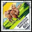 Vintage postage stamp. Old Camel. — Stock Photo