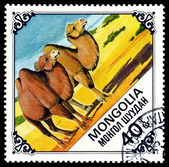 Vintage postage stamp. Two Camels. — Stock Photo