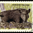 Vintage  postage stamp. Wuld Pig and Piglets. — Stock Photo
